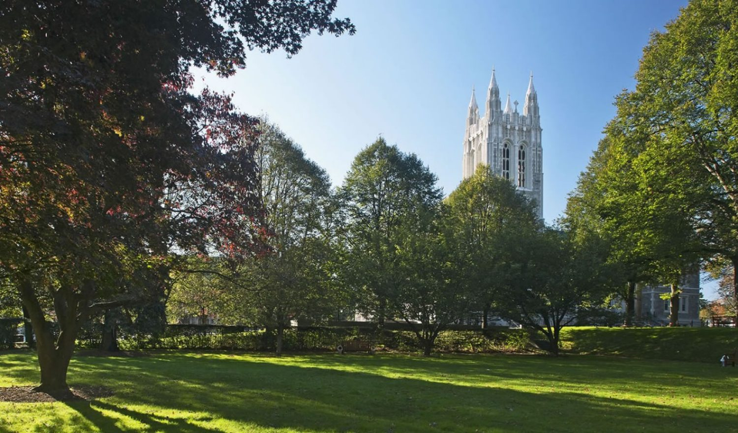 Photo of Gasson in the Spring
