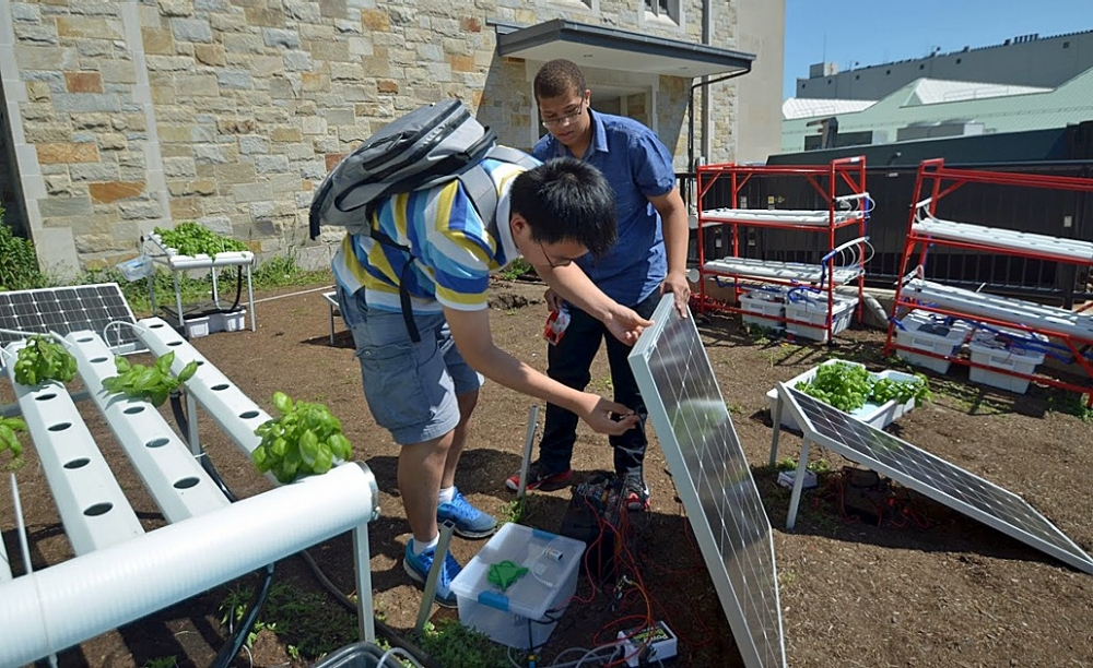 Shantao Cao, a visiting student from Jinling High School in Nanjing, China, and Ildo Depina, an eighth grader at the Lilla G. Frederick Pilot Middle School in Dorchester, work on a solar panel to power their hydroponic basil garden at BC's two-week summer STEM workshop.