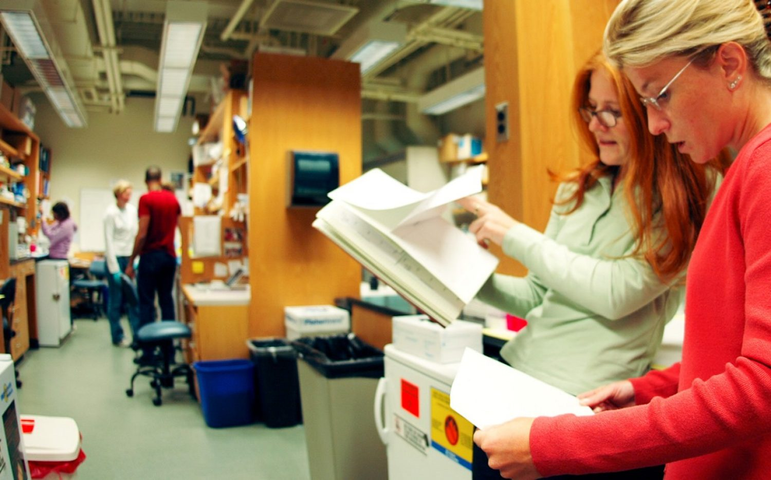 Photo of 2 Researchers looking at data on papers