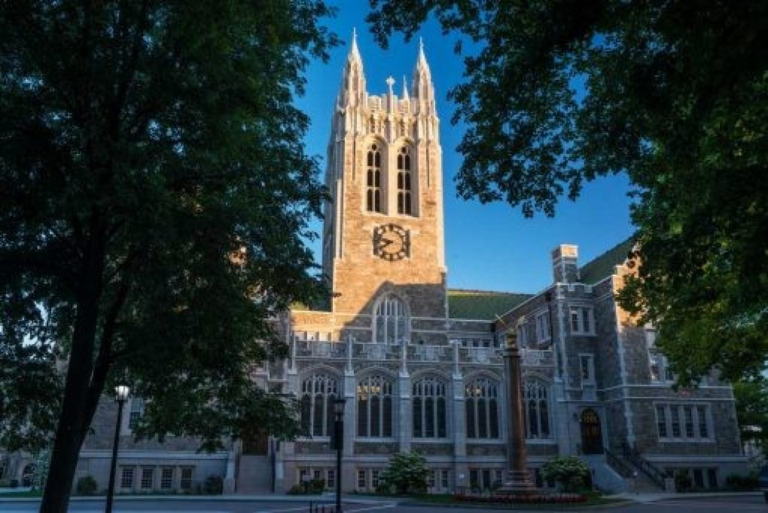 Gasson in Summertime
