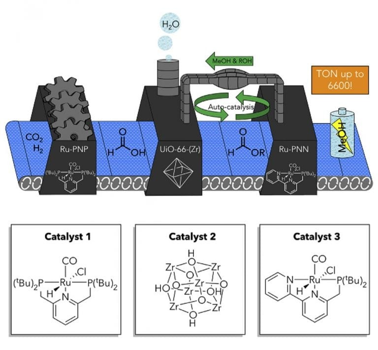 Boston College researchers used three different catalysts in one system to transform, in three steps, the greenhouse gas carbon dioxide to methanol, a liquid fuel that serves as a promising method for hydrogen storage. The first catalyst converts carbon dioxide and hydrogen to formic acid, which is then modified by a second catalyst to form an ester, incorporating an alcohol additive and producing water. The third catalyst in the system, which is typically incompatible with the first catalyst, then converts this ester to methanol. The team was able to perform this multistep reaction in one reaction vessel despite using two incompatible catalysts by encapsulating one in a porous framework that also acts as the second catalyst.