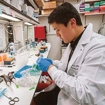 image of bc student working in a lab