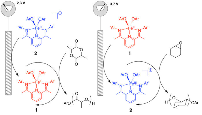 Electrocheimcally Switchable Ring-opening Polymerization of Lactide and Cyclohexene Oxide