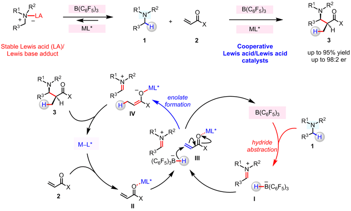 Radical Cascade-Triggered Controlled Ring-Opening Polymerization of Macrocyclic Monomers