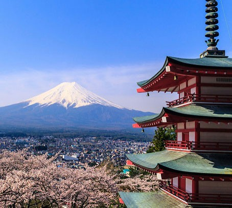 Mount Fuji with the sakura trees and the Chureito Pagoda