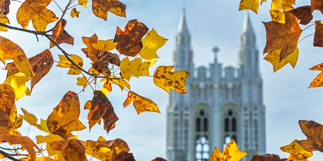 Gasson tower in autumn