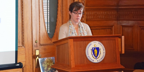Erin Walter speaking to Mass. legislators.