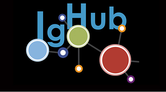 "Black background with colorful burst. Text reads ""IgHub"""