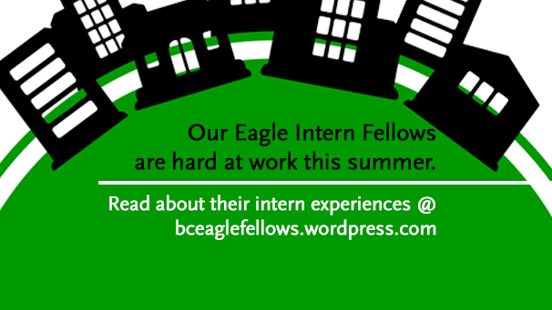 Eagle Intern Fellows