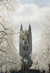 gasson in snow
