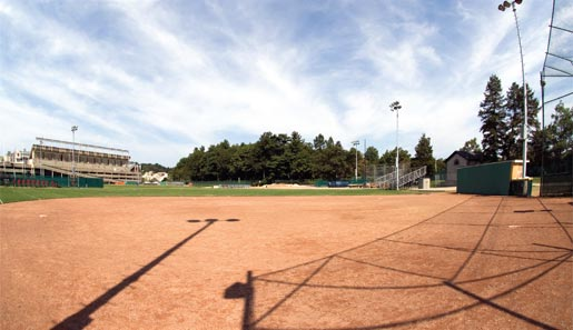 existing shea field