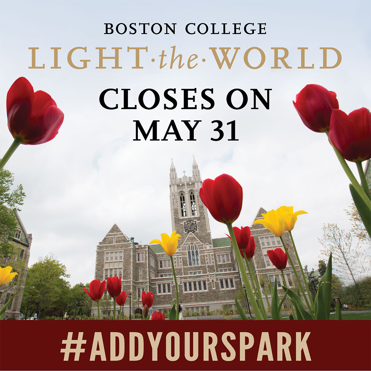 Light the World Closes on May 31