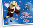 BC Lovebird